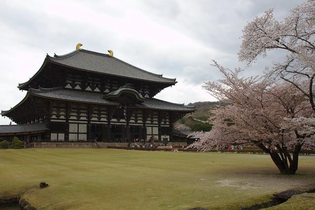 1059 - Nara
