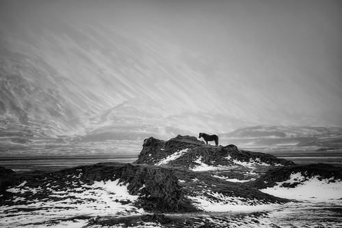 travel winter blackandwhite bw outcrop horse mountain snow mountains slr nature monochrome animal rock digital photoshop landscape photo iceland nikon rocks europe european hill hills arctic photograph figure processing lone layers nordic dslr volcanic hdr highdynamicrange ísland mane d800 icelandic glacial postprocessing travelphotography southiceland thefella conormacneill thefellaphotography