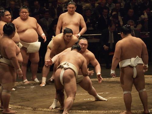 大相撲稽古総見2013