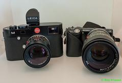Leica M240 vs Sony NEX-5N