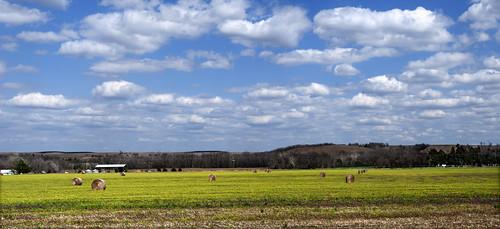 Kansas Springtime Pano