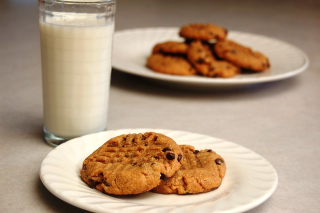 a simple real food recipe :: flourless peanut butter chocolate chip cookies :: allergen free options