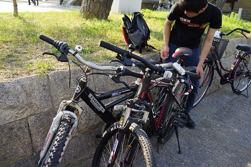 2台のオフロード自転車で法隆寺へ