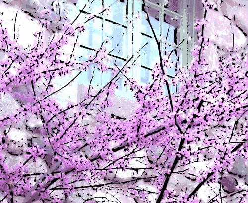 Redbud Tree and Green Window (Digital Woodcut) by randubnick