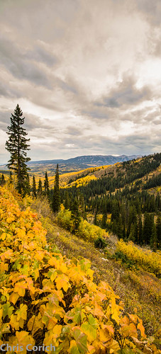 autumn autostitch panorama usa canon colorado unitedstates stitch roadtrip co gunnison autumncolor ptgui ohiopass ef24105f4l 5dmkii cr730