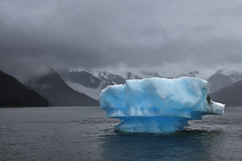 Iceberg-Tracy Arm