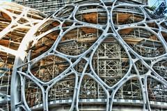 Building Amazon's Biospheres