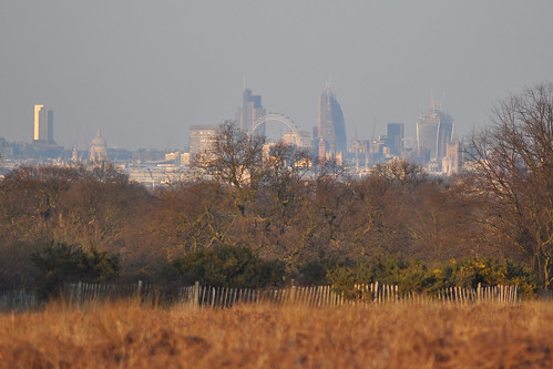 City of London from Sawyer's Hill