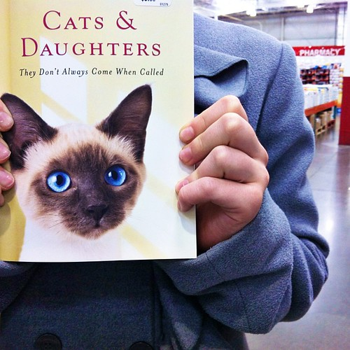 For my husband's love of cats... {cough}