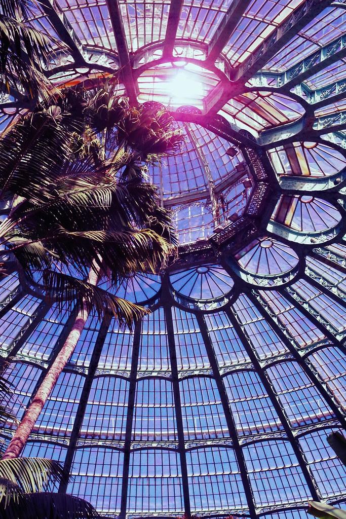 K01 比利時皇家溫室開放日