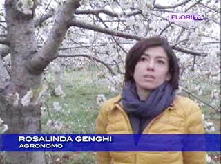 Rosalinda Genghi