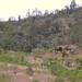 Hut - Casita cerca de San Pedro y San Pablo Ayutla, Región Mixes, Oaxaca, Mexico por Lon&Queta