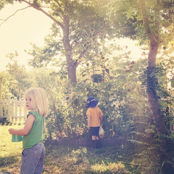 Gardening with the little ones (from the morning).