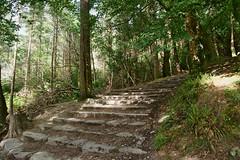 Torc Waterfall Steps