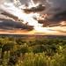 Worthington State Forest (2)