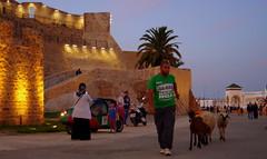 Day 2 Tanger