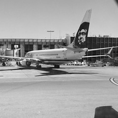 Alaska Airlines in LAX.  #alaskaairlines #lax #someday #iwishicould #bnw #sony #california #volar #fly #flight #airlines #usa #aeroport #explore #travelgram #plane #avion #viajar #planegram #wall #findyourway #choose #enjoy #outdoor