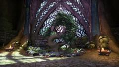 Elden Root Mages Guild