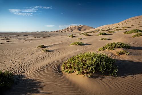 africa texture canon sand desert sanddune namibia dune7 walvisbay leefilters