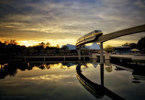 light sunset reflection birds epcot disney monorail wdw waltdisneyworld