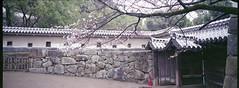 Himeji Castle Panorama: 26 March 2013