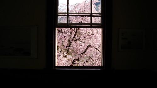 2013/04 京都府庁旧本館