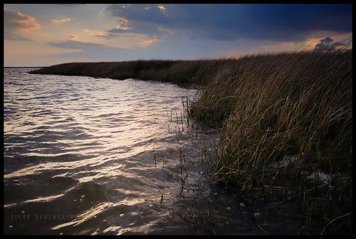 park island nikon state gimp maryland marshland janes d90 18105mm