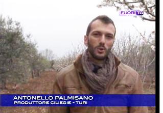 Antonello Palmisano