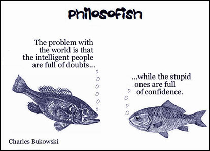 philosofish 41 small