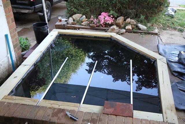 Sqwibs koi pond for Pond veggie filter