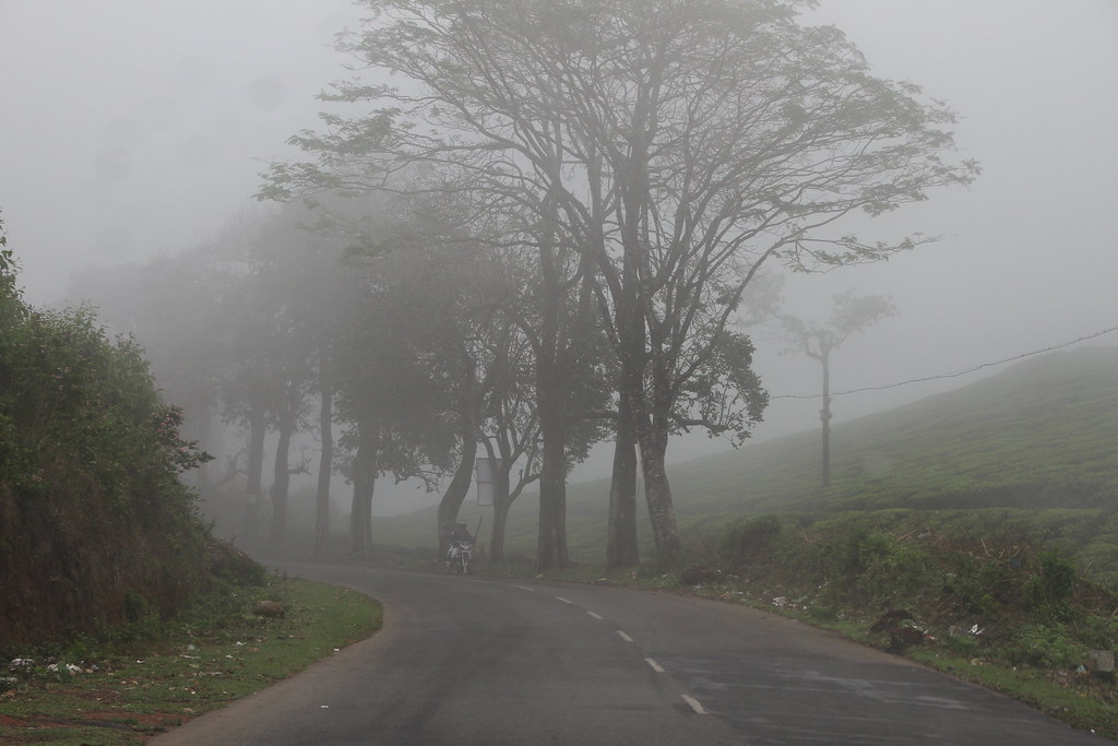 A Walk in the clouds in Kerala