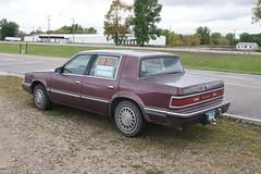 91 Dodge Dynasty