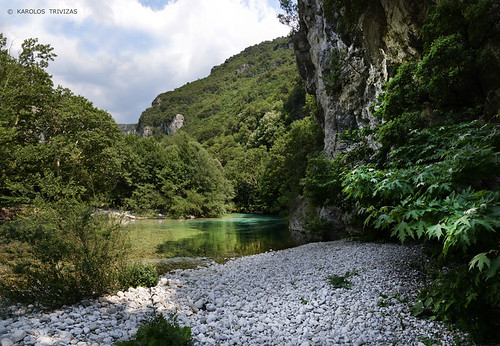 wood mountains water forest river rocks stones hill pebbles greece gorge curve riverbank planetrees slope epirus rivershore voidomatis vikosaoosnationalpark canyonturquoise