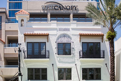 The Birchwood and Canopy St. Petersburg Florida