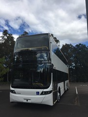 New buses for Sydney?