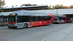 WMATA Metrobus 2015-2016 New Flyer Xcelsior XN40 #2846 & #2860
