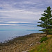 Small photo of Fundy Shore.