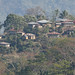 Small photo of Journey to Pagal, Flores