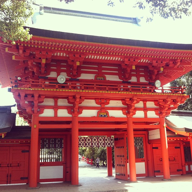Hikawa Shinto Shrine #ichigonewjourney