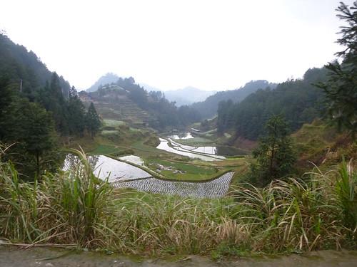 Guizhou13-Kaili-Langde (110)