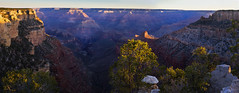 panorama - dawn - Grand Canyon - 3-31-13 04
