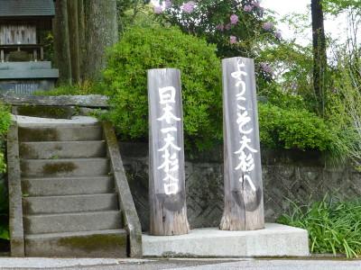 oosugi-2013-4-21-2