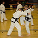 Fri, 04/12/2013 - 20:17 - From the Spring 2013 Dan Test in Beaver Falls, PA.  Photos are courtesy of Ms. Kelly Burke and Mrs. Leslie Niedzielski, Columbus Tang Soo Do Academy