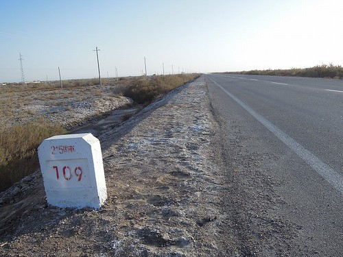 国道115号線