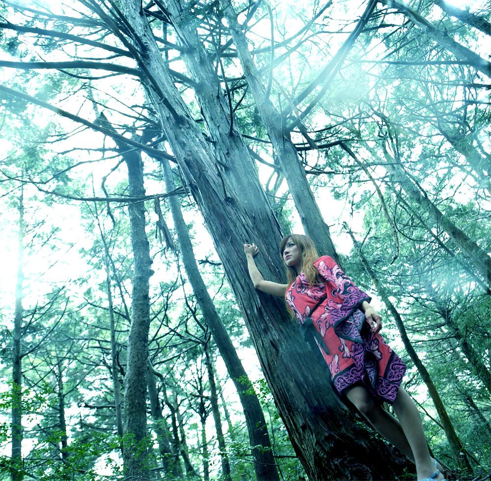 *大森林の伝説2