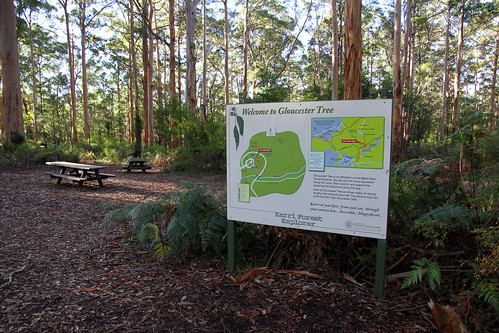 Pemberton - Gloucester Tree - Sign