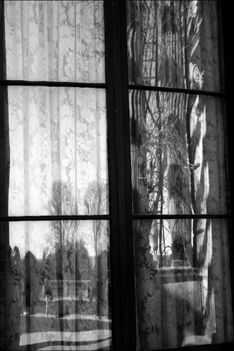 trees window reflections panes newport curtains windowpane windowreflection windowpanes newportri windowreflections blackandwhiteimage sheercurtains thebreakersmansion