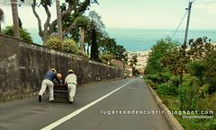Os Carros (Monte, Funchal)
