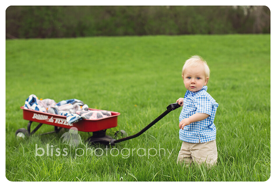 boy with wagon bliss photography-4121