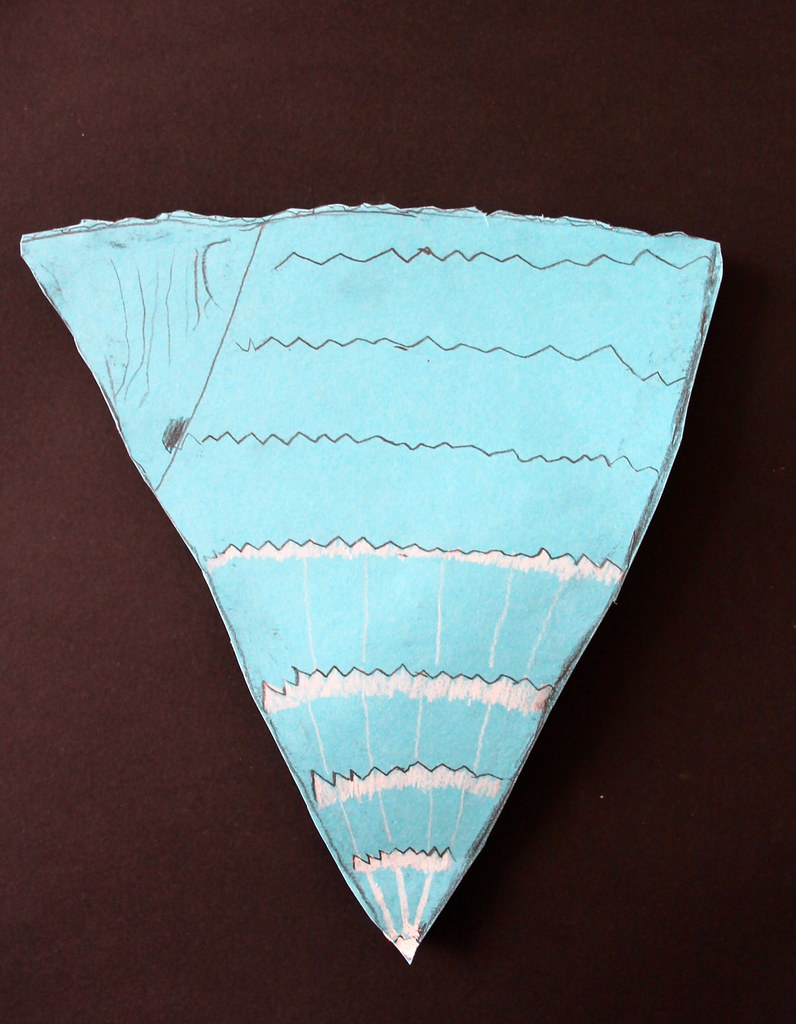 4th grade sea shells